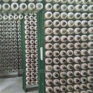 杏鮑菇網格架浸塑網片鐵絲網片蘑菇養殖網架
