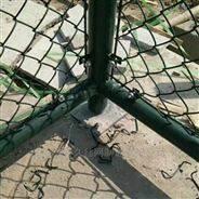 运动场绿色铁丝勾花网体育场篮球场护栏网